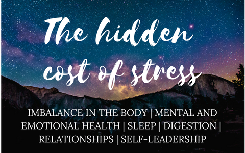 The Hidden Cost of Stress Seminar