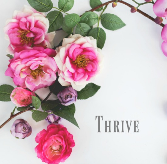 Reflections on thriving in life – #1